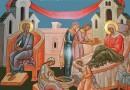 The Future Theotokos is Born