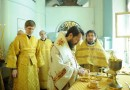 Metropolitan Hilarion: Health and illness are in the hands of God