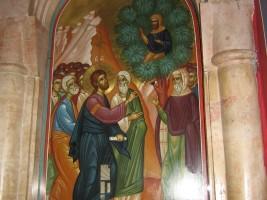Zacchaeus Sunday and the Most Basic…