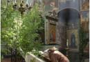 Pentecost and Creation