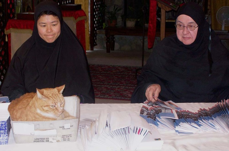 Cat power: St. Barbara may be the patron, but house pet Punkin rules the roost. (Courtesy of St. Barbara Orthodox Monastery)