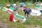 Youth Department announces summer service pilgrimage to Alaska