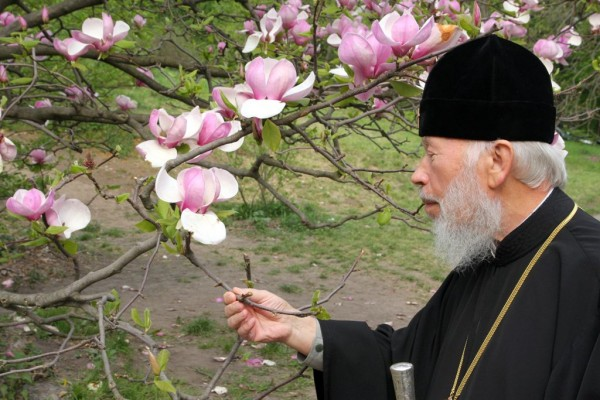 An Angel of the Church: In Remembrance of Metropolitan Vladimir of Kiev and All Ukraine: Part IV