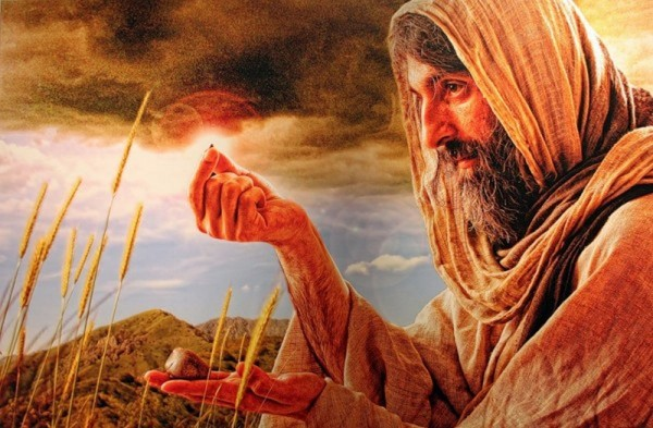 Receiving the Message and Bearing Fruit: On the Twentieth Sunday after Pentecost