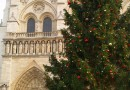 Moscow Christmas Tree Installed Before the Notre Dame Cathedral Paris