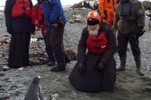 Patriarch Kirill calls Antarctica a representation of ideal humanity