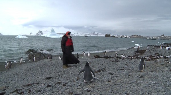 Patriarch Kirill strolls among penguins, prays in Orthodox church in Antarctica