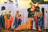 How to Respond like Zacchaeus When Salvation Comes to Your House