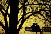 Understanding Love on Valentine's Day