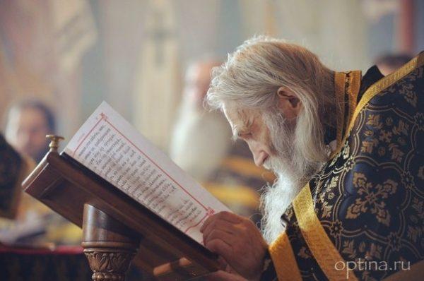 Schema Archimandrite Ilii (Nozdrin)