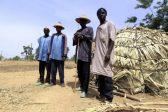 20 Christians, Including 9 Children, Massacred in Nigerian Village