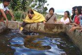 16 united to Christ in Filipino Mass Baptism (+ VIDEO)