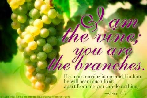 'What Fruit Has Your Zeal Born?'