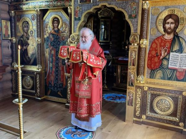 Patriarch Kirill on Coronavirus: With God's Mercy We'll Overcome This Trial