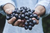 Vitamins for the Homeless. Residents of Chelyabinsk Give Part of the Harvest to the Social Canteen